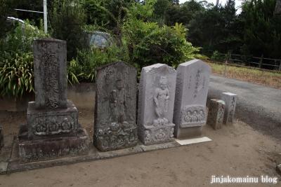 天神社 (幸手市惣新田)25