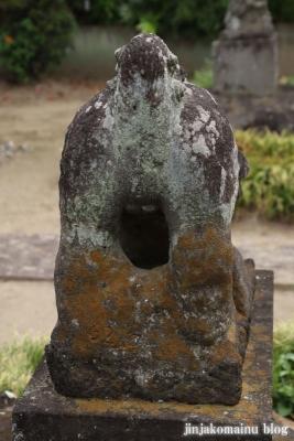 天神社 (幸手市惣新田)20
