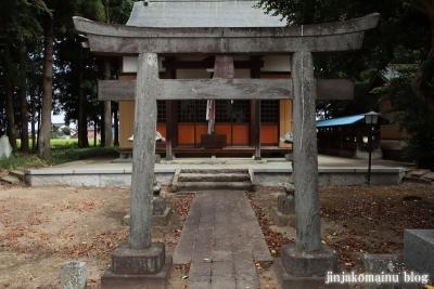 香取神社 (幸手市下吉羽)10