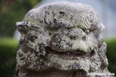 木立八幡神社 (幸手市木立)19