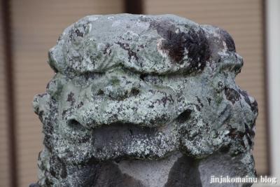 木立八幡神社 (幸手市木立)20