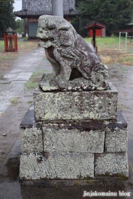 木立八幡神社 (幸手市木立)11
