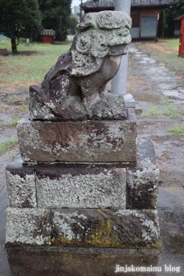 木立八幡神社 (幸手市木立)15