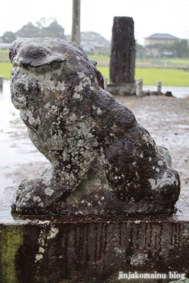 木立八幡神社 (幸手市木立)17