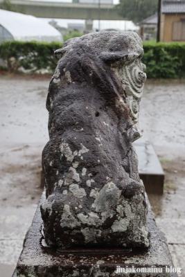 木立八幡神社 (幸手市木立)18