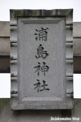 浦島神社 (猿島郡五霞町小手指)4