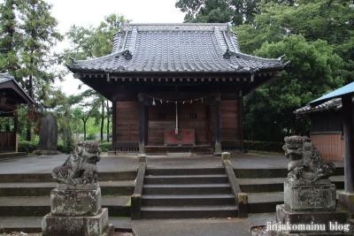 香取神社 (猿島郡五霞町小手指)4
