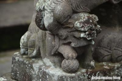 香取神社 (猿島郡五霞町小手指)22