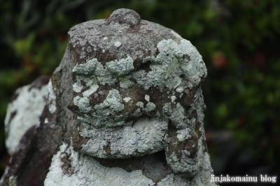 鷲神社 (加須市向古河)14