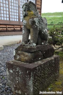 鷲神社 (加須市向古河)5