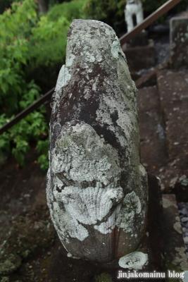 鷲神社 (加須市向古河)8