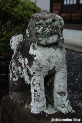 鷲神社 (加須市向古河)10
