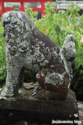 鷲神社 (加須市向古河)11