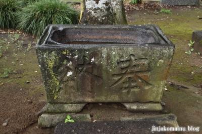 浅間神社 (加須市伊賀袋)5