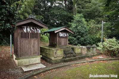 浅間神社 (加須市伊賀袋)9