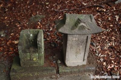 浅間神社 (加須市伊賀袋)10