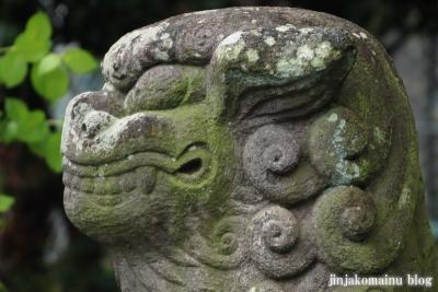 浅間神社 (加須市伊賀袋)22