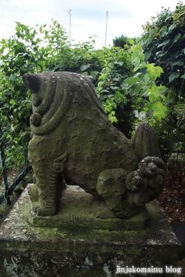 浅間神社 (加須市伊賀袋)19