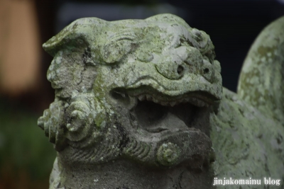 (鷲神社 加須市駒場)19