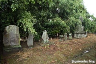 鷲神社  (加須市本郷)8