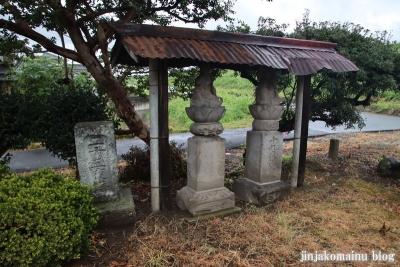 鷲神社  (加須市本郷)22