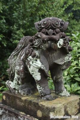 鷲神社  (加須市本郷)15