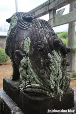 鷲神社  (加須市本郷)16