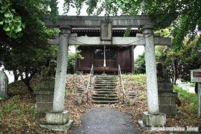 鷲神社  (加須市栄)1