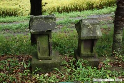 鷲神社  (加須市栄)5