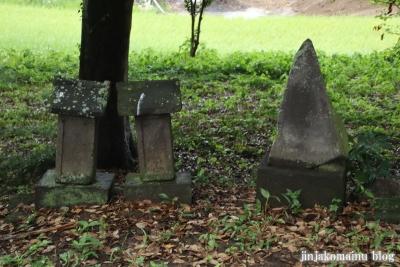 鷲神社  (加須市栄)6