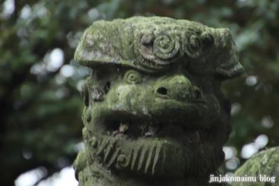 鷲神社  (加須市栄)15