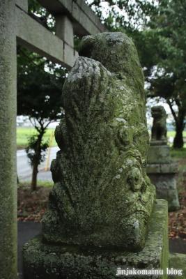 鷲神社  (加須市栄)10