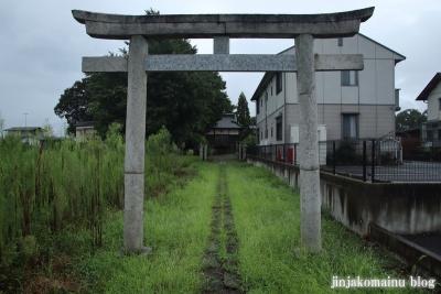 鷲神社 (加須市麦倉)2