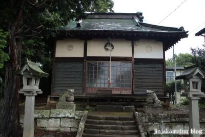 鷲神社 (加須市麦倉)3