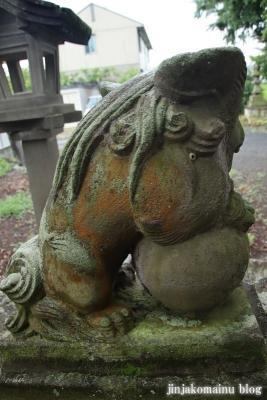 鷲神社 (加須市麦倉)9