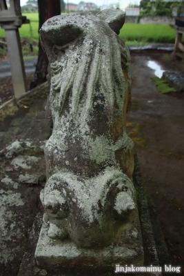 鷲神社 (加須市麦倉)10