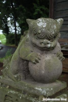 鷲神社 (加須市麦倉)12