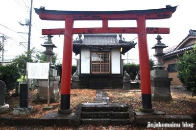 鷲神社  (加須市小野袋)1