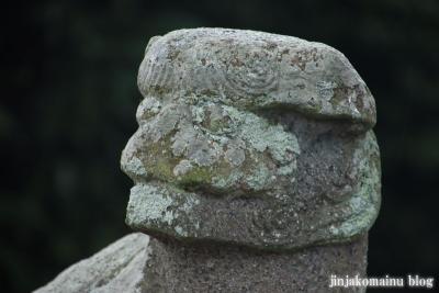 鷲神社  (加須市小野袋)14