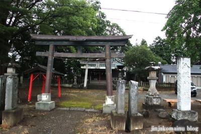 八坂神社  (加須市麦倉)1