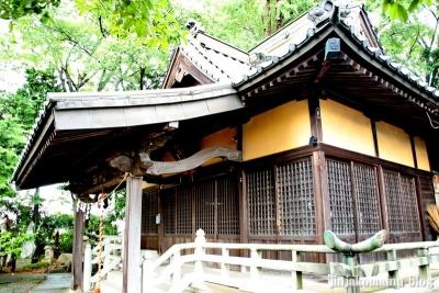 八坂神社  (加須市麦倉)11