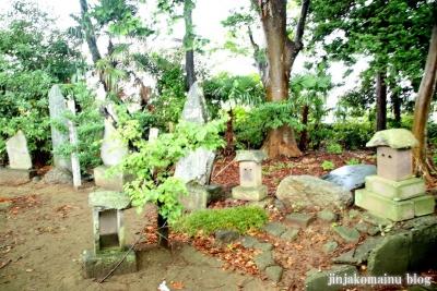 八坂神社  (加須市麦倉)14