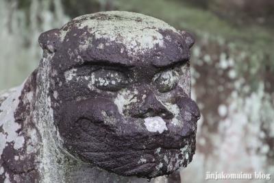八坂神社  (加須市麦倉)27