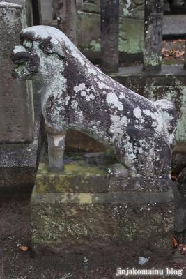 八坂神社  (加須市麦倉)17