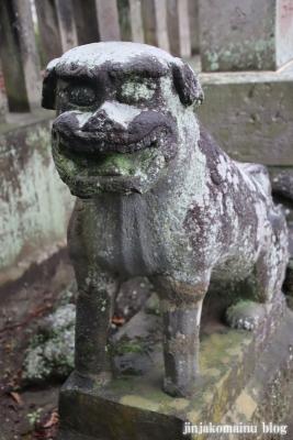 八坂神社  (加須市麦倉)18