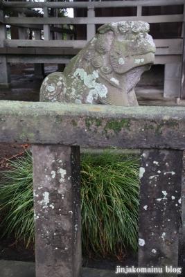 八坂神社  (加須市麦倉)32