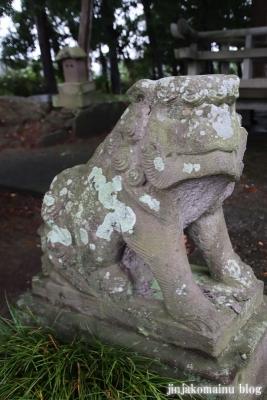 八坂神社  (加須市麦倉)33