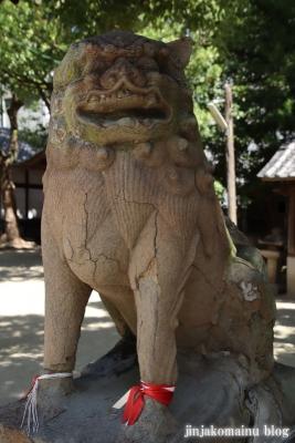 津原神社(東大阪市花園本町)26