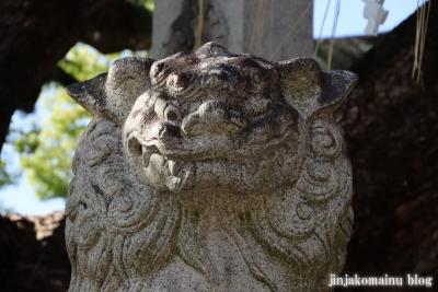 石切劔箭神社(東大阪市東石切町)22