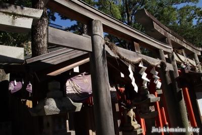 石切劔箭神社(東大阪市東石切町)40